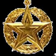 Орден Золотая Звезда звания Героя Украины