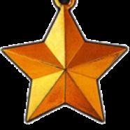 Медаль «Золота Зірка» Героя Радянського Союзу
