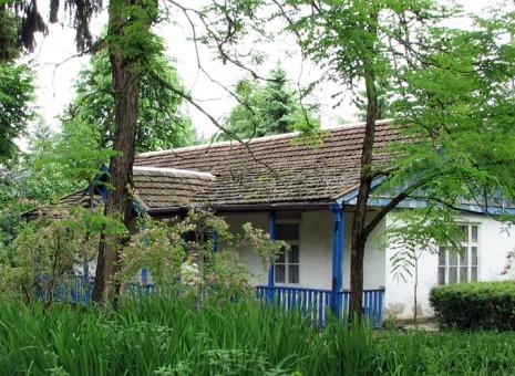 Будинок в с. Олександрівське, де жила письменниця